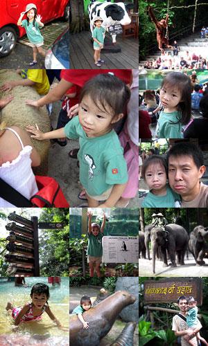 20051212-zoo2.jpg